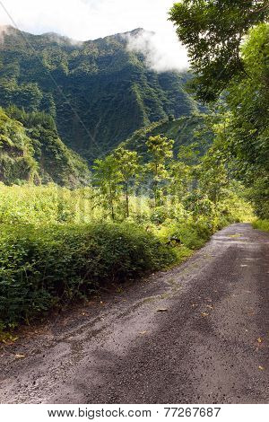 The mountain in a fog and clouds and road. Tropical nature. Tahiti. Polynesia.