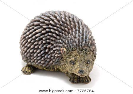 Hedgehog  A White Background