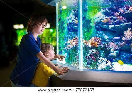 Kids Watching Fishes In Aquarium