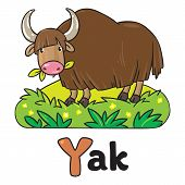 picture of yaks  - Children vector illustration of funny grazing wild yak - JPG