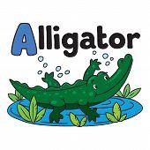 foto of alligator baby  - Children vector illustration of little funny alligator or crocodile swims in the lake - JPG