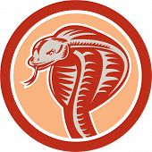 picture of snake-head  - Illustration of a cobra viper snake serpent head with tongue out set inside circle on isolated background done in retro style - JPG