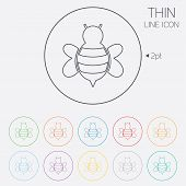 pic of flying-insect  - Bee sign icon - JPG