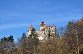 picture of dracula  - dracula bran castle romania history landmark architecture - JPG