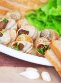 pic of escargot  - Tasty escargot dish on the plate with bread and garlic - JPG
