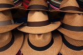stock photo of panama hat  - Handmade panama hats for sale at the outdoor craft market in Otavalo - JPG