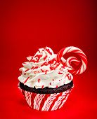 stock photo of icing  - Chocolate Christmas cupcake with vanilla buttercream icing sprinkles and a candy cane over a red background - JPG