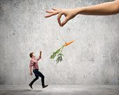 image of tease  - Young man in casual teased by carrot hanging on rope - JPG