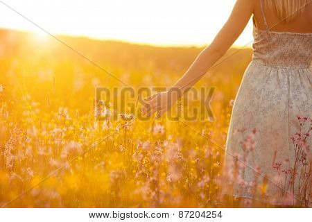 Flowers And The Woman Palm In The Field