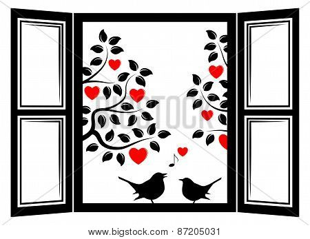 Love Birds In The Window