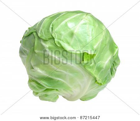 Tasty Cabbage Isolated On White