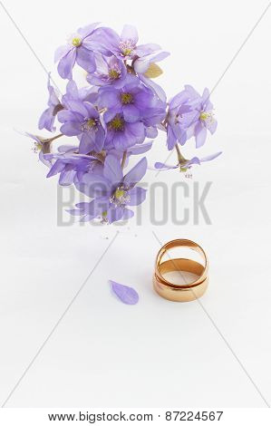 Two Golden Wedding Rings And Violets