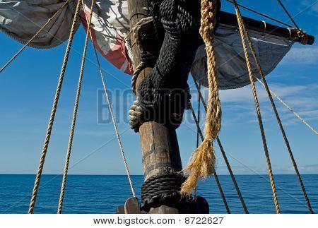 Sailing Along Madeira Coast