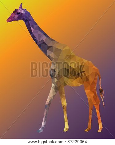 Giraffe portrait low polly