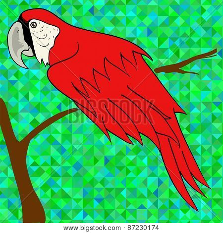 Big Red Parrot