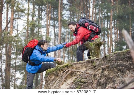 Young male hiker helping friend while trekking in forest