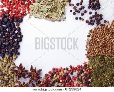 Frame of diferent spices on white background