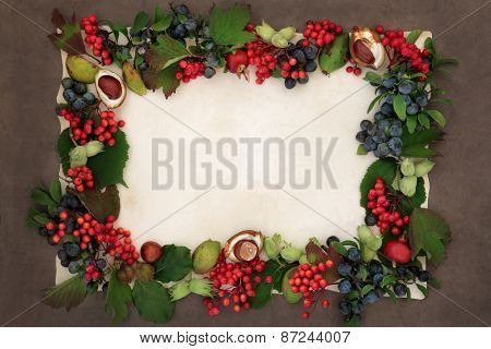 Background border of autumn fruit and nuts over parchment and brown paper background.