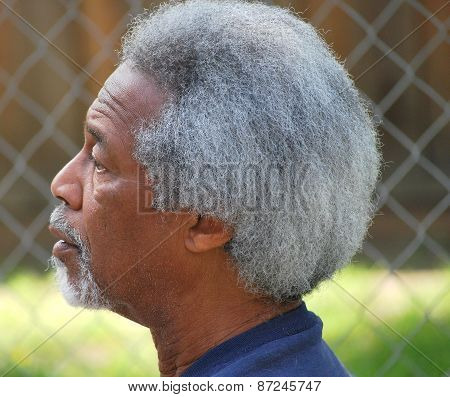 African american male.