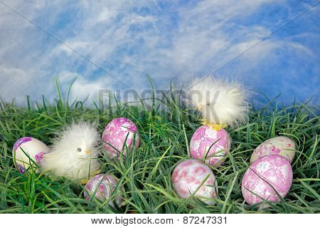 Easter dyed eggs with chicks
