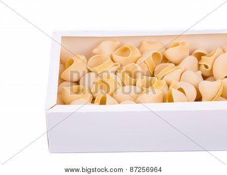 Uncooked italian pasta lumaconi in cardboard box.