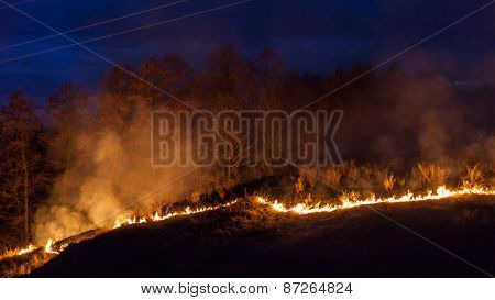 Bushfire At Night
