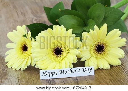 Happy Mother's Day card with cream gerbera daisies
