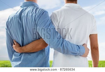 people, homosexuality, same-sex marriage, gay and love concept - close up of happy male gay couple hugging from back over blue sky and grass background