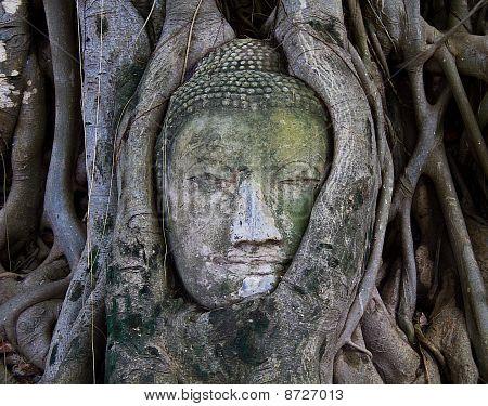 The Head Of The Sand Stone Buddha Image
