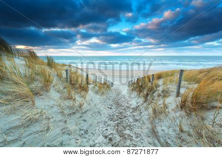 Path On Sand To Beach At Sunset