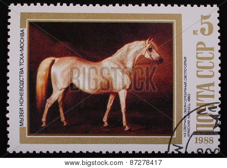 Moscow, Ussr-circa 1988: Postage Stamp Edition Mail Ussr Shows Image Of The Painting Arabian Stallio