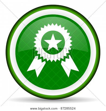 award green icon prize sign