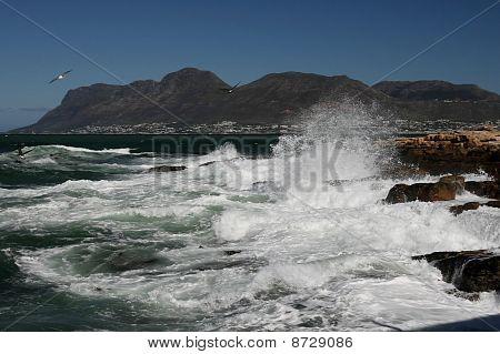 Rough Ocean And Rocks