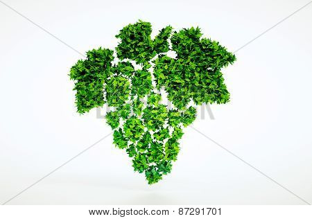 Bio Grapes Sign With Included Clipping Path