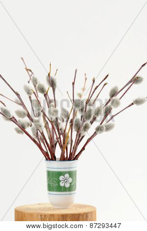 Bunch Of Pussy Willow Twigs In Green Vase On White Background