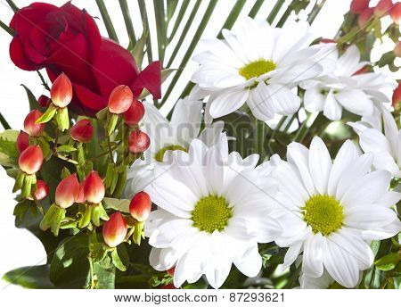 Bright bouquet. Still-life on a white background