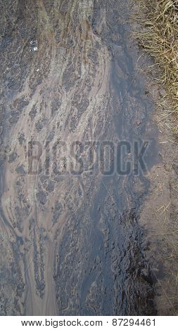 Peat alluvium and sand
