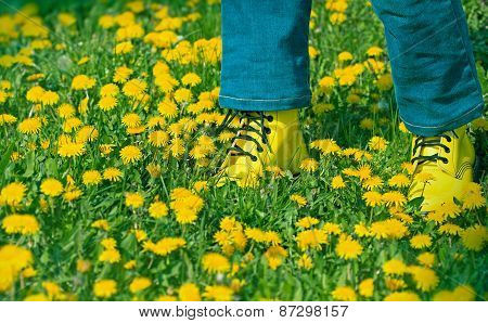 legs with yellow shoes in dandelion field