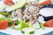 pic of blue crab  - Blue Crab Salad with avocado - JPG