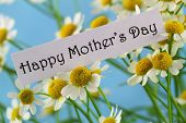 stock photo of special day  - Happy Mother - JPG