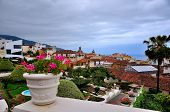 stock photo of canary  - View the town of La Orotava Tenerife Canary Islands Spain - JPG