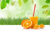 image of orange-juice  - Fresh orange juice - JPG