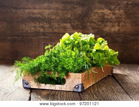 Green Herbs In Wooden Box