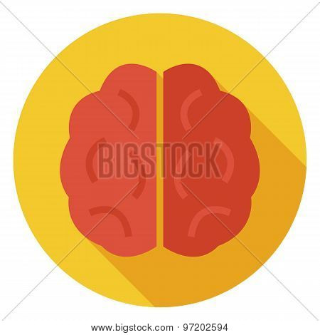 Flat Knowledge And Wisdom Brain Circle Icon With Long Shadow