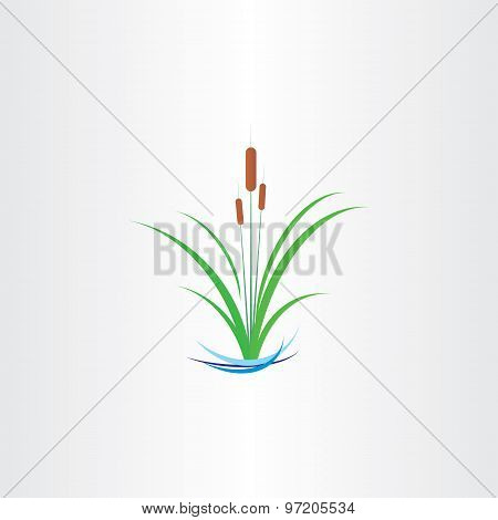 Green Reed Bulrushes Vector Design