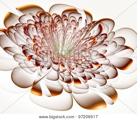 Beautiful Beige Flower On White Background. Computer Graphics.