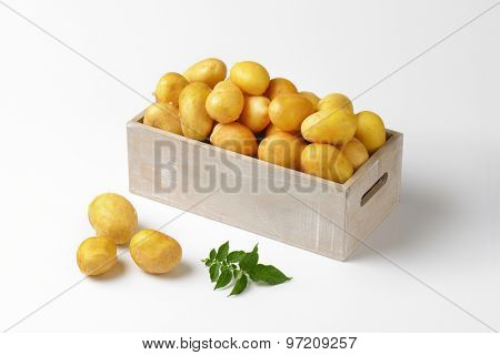 box of fresh potatoes on white background