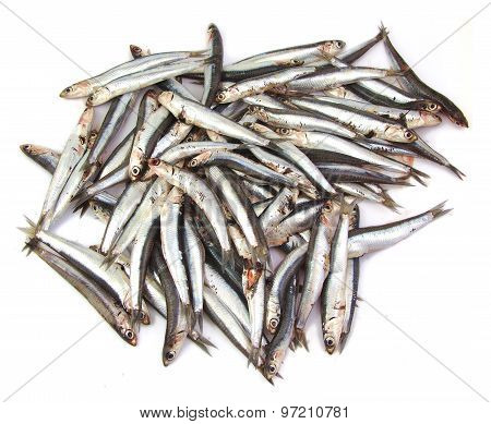 Bunch of anchovies on white background
