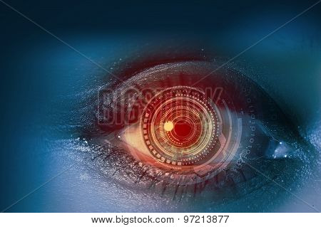 Eye identification