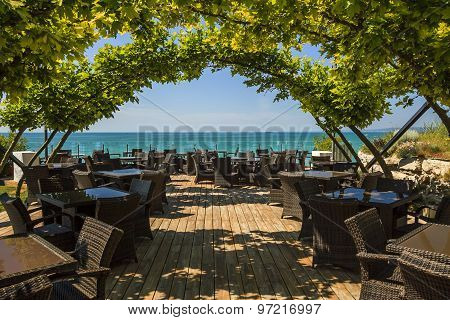 Luxurious Cafe On The Beach In The Shade Of Maple Arches